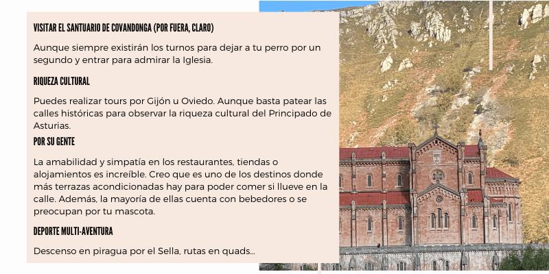 turismo con perro asturias