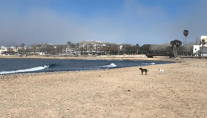 Playa de la Riera d'Alforja