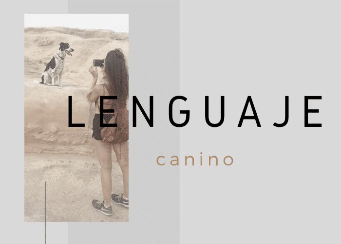 lenguaje-canino