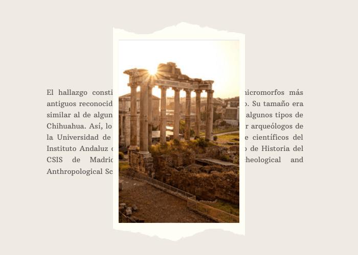 los-romanos-tenian-perros-miniatura