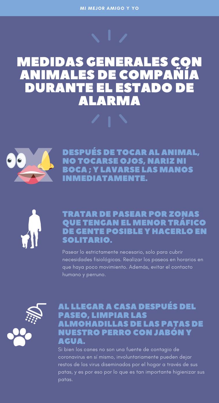 medidas-generales-con-animales-de-compañia-en-el-estado-de-alarma