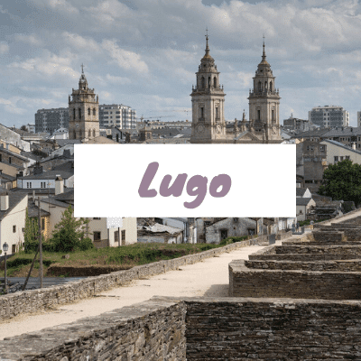 lugo dog friendly