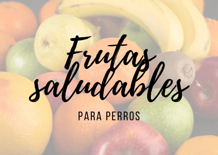 perros frutas saludables