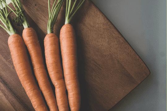 zanahoria buena para perros