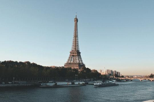 viajar a paris con perro