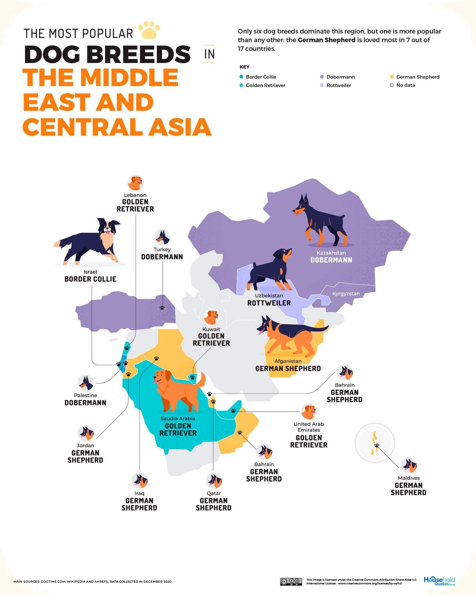 Mapa de las razas más populares en Oriente Medio y Asia Central