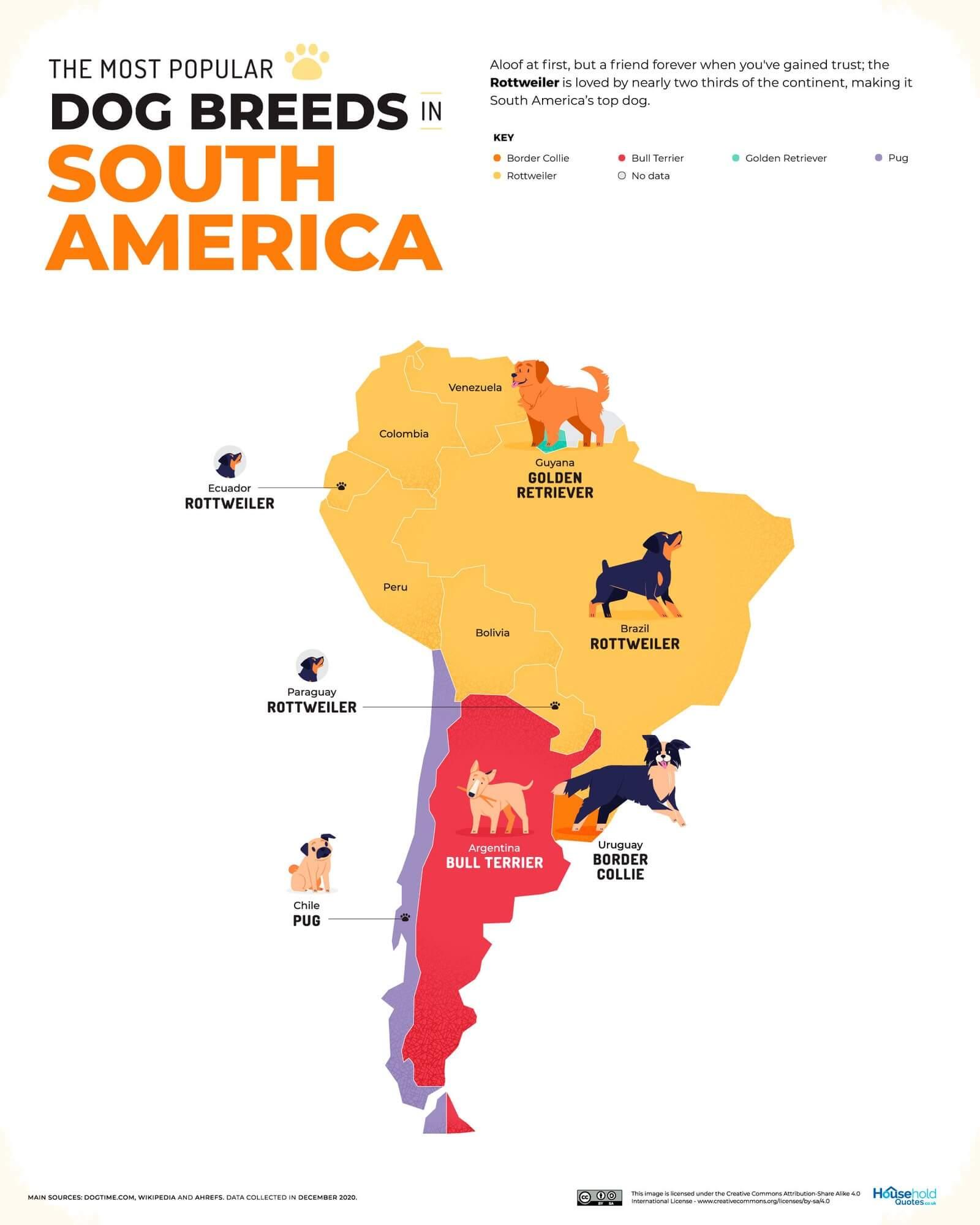 Mapa de los perros más populares en América del Sur