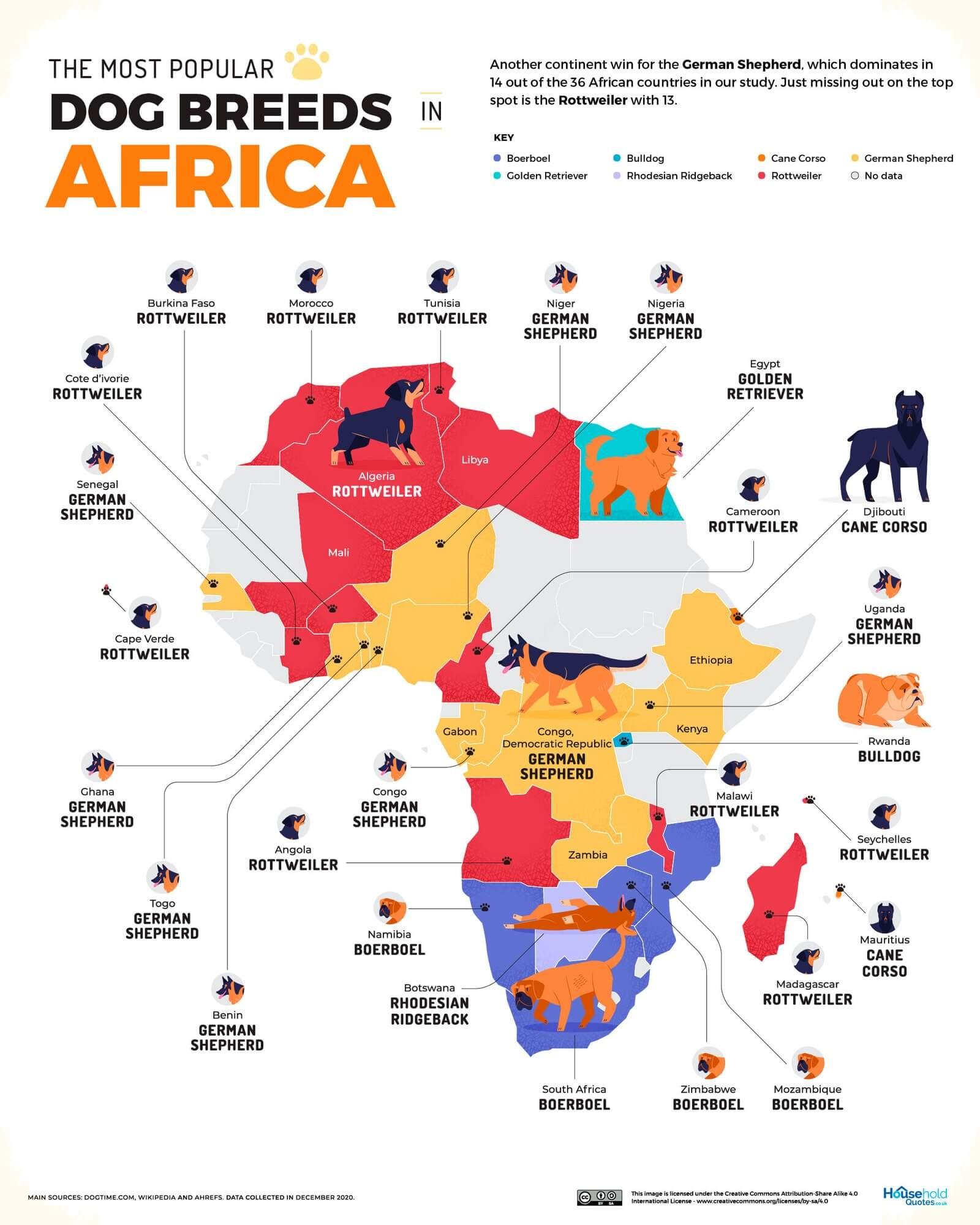 mapa razas mas populares en africa